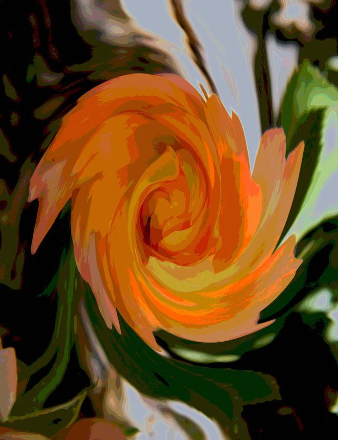 Modern Photograph - Passionate Swirl Of Orange by Mary Sedivy