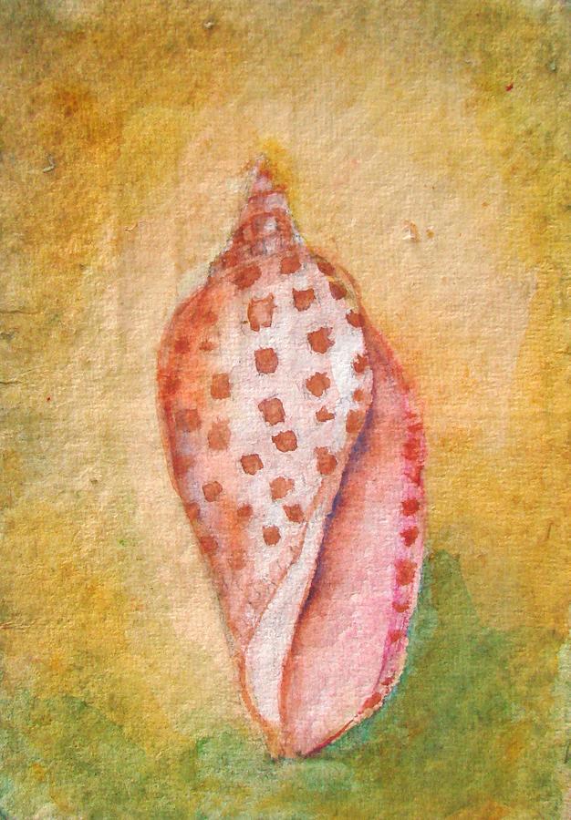 Pastel Junonia Volute Shell Painting
