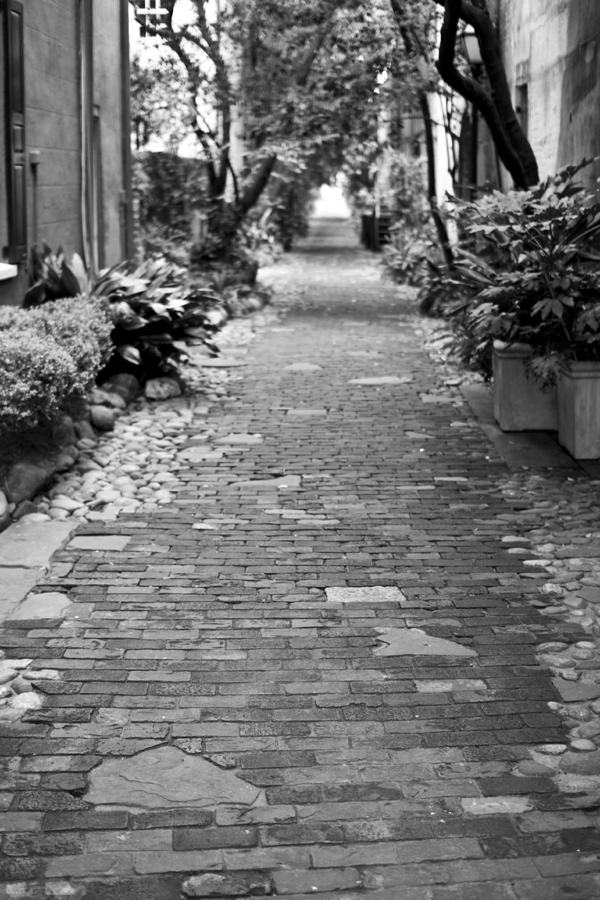 Patchwork Pathway Photograph