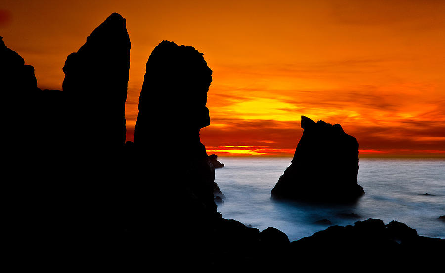 Patricks Point Silhouette Photograph  - Patricks Point Silhouette Fine Art Print