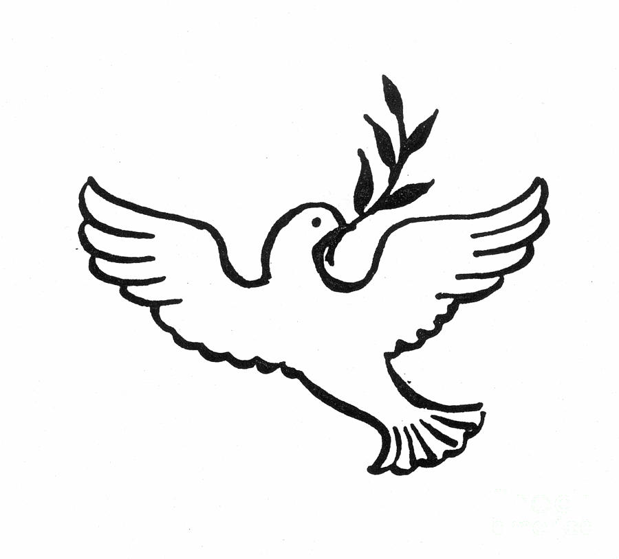 Peace Dove is a photograph by Granger which was uploaded on July 1st ...