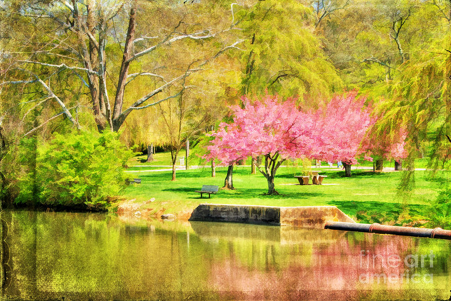 Asian Photograph - Peaceful Spring II by Darren Fisher