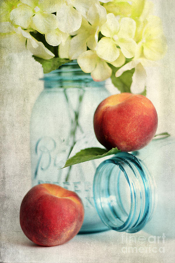 Peachy Photograph  - Peachy Fine Art Print