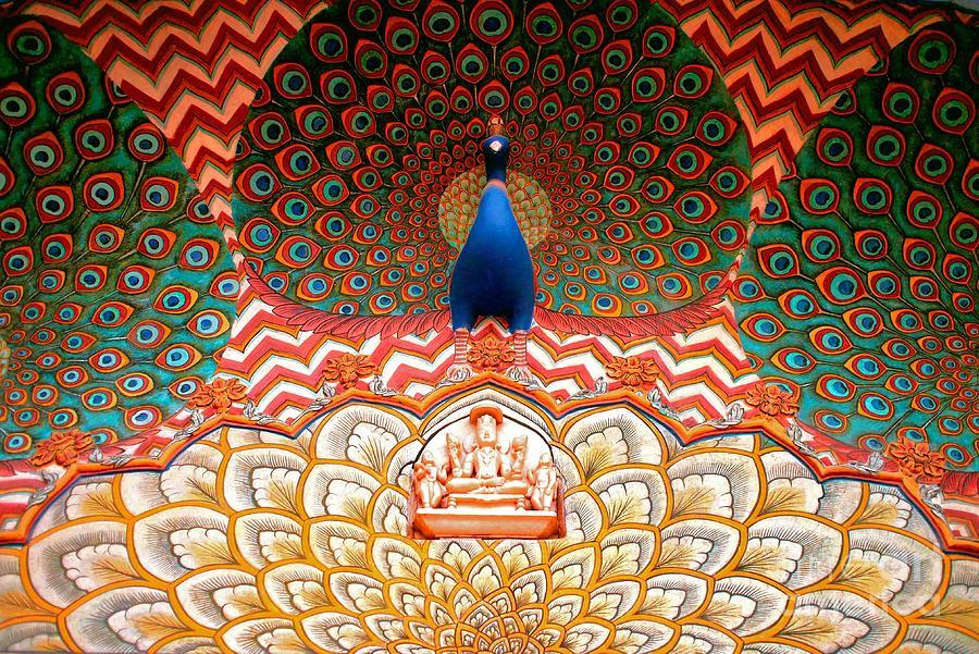 Peacock Door Photograph