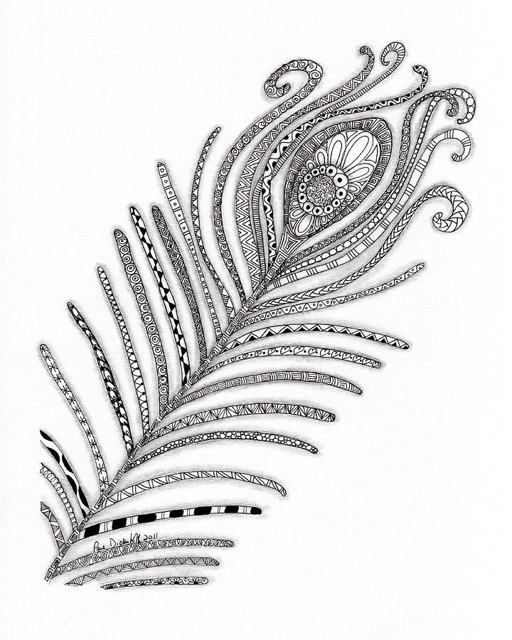 Peacock Feather Drawing