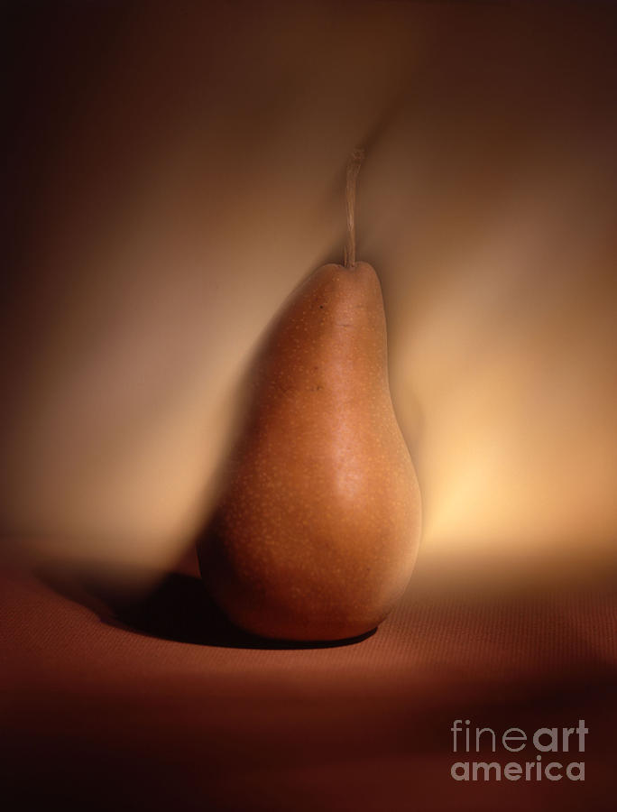 Pear Photograph  - Pear Fine Art Print