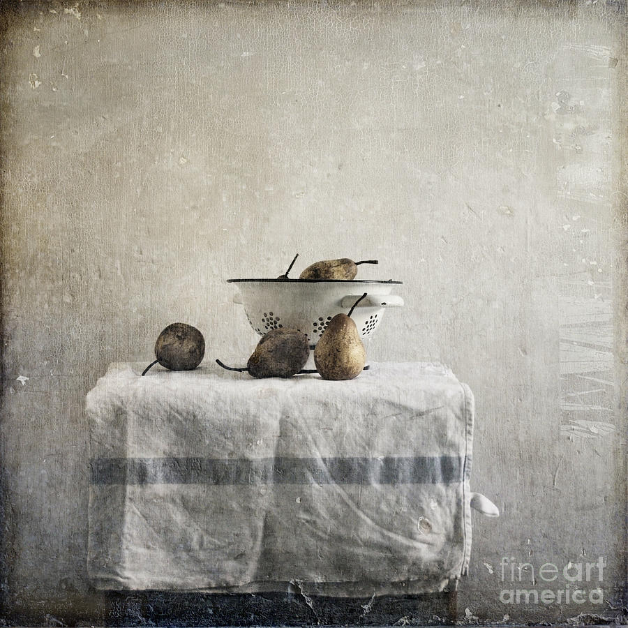 Pears Under Grunge Textures Photograph - Pears Under Grunge by Paul Grand