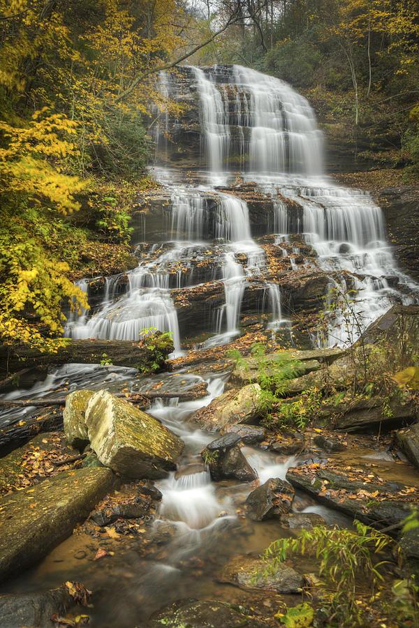 Pearsons Falls Photograph