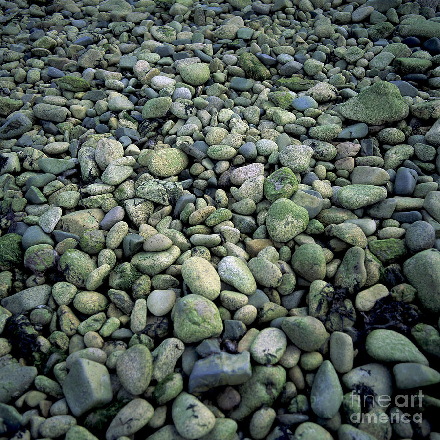 Abundance Photograph - Pebbles by Bernard Jaubert