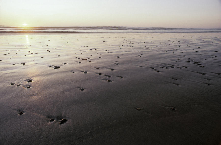 Pebbles Form Patterns On A Sandy Ocean Photograph