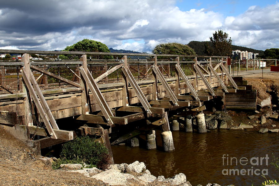 Pedestrian Bridge At Point Isabel In Richmond California . 7d15083 Photograph