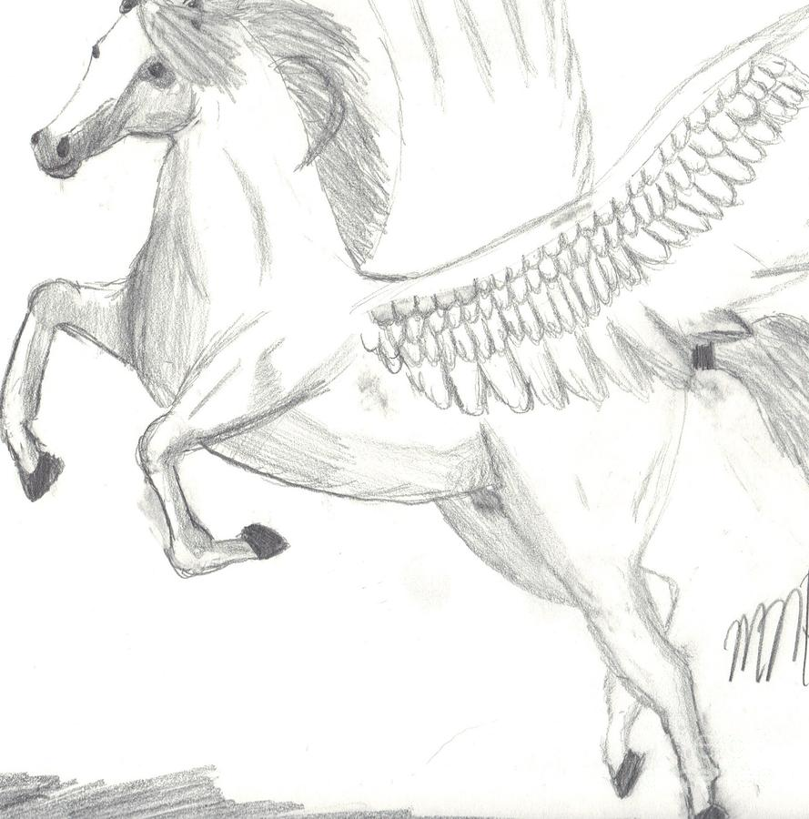 Pegasus Drawing  - Pegasus Fine Art Print