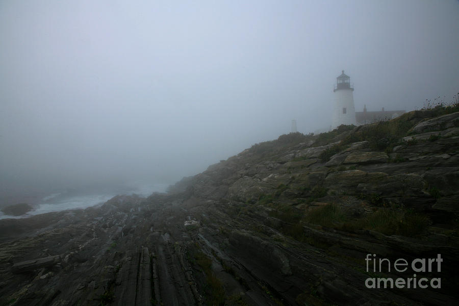 Pemaquid And The Sea Photograph
