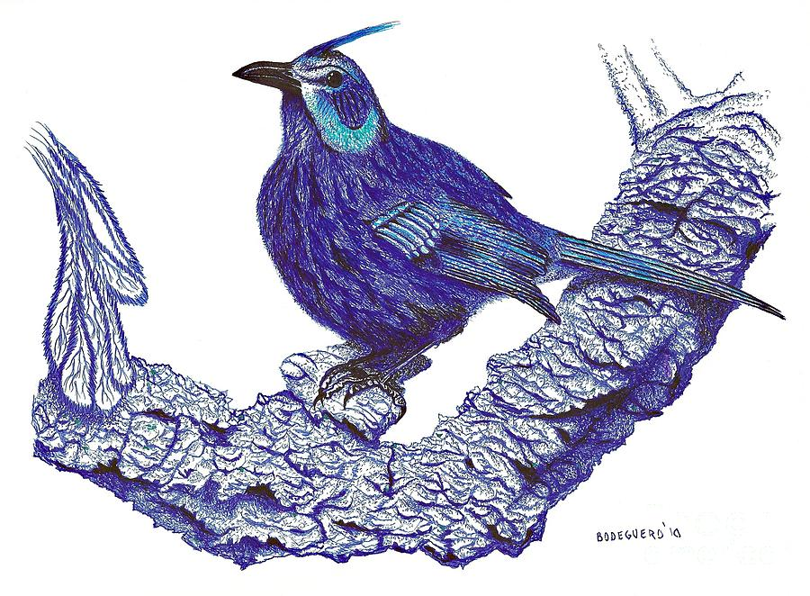 Pen And Ink Drawing Of Blue Bird Drawing