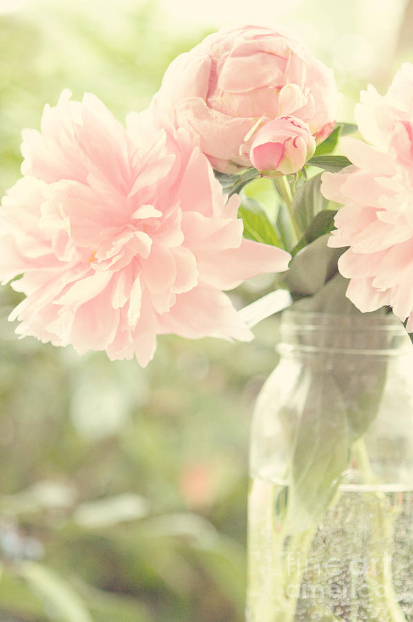 Peonies In A Mason Jar Photograph