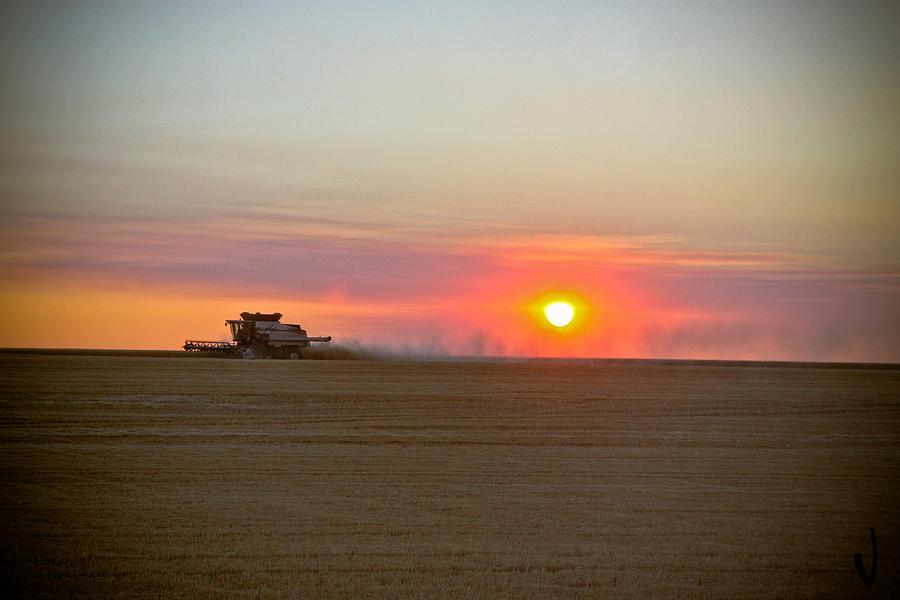 Perfect Harvest Photograph