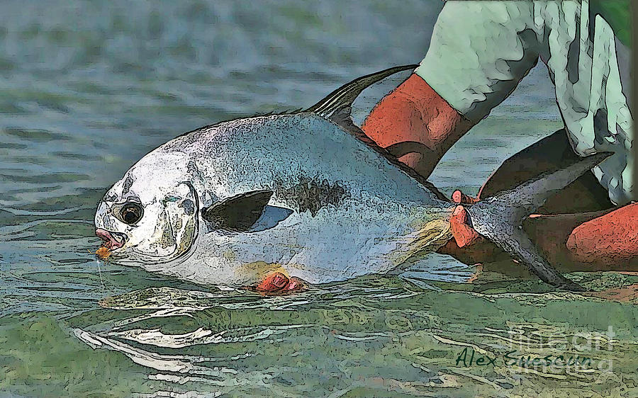 Permit On Fly Painting