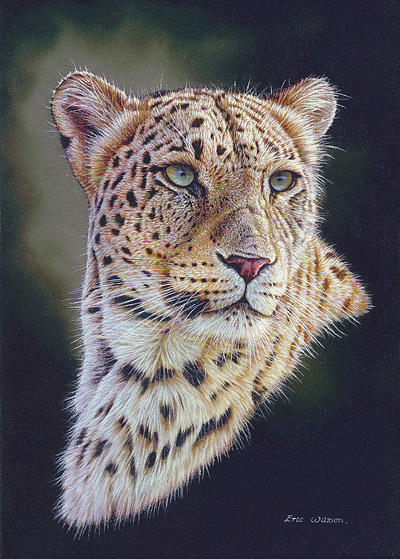 Persian Leopard Portrait Painting