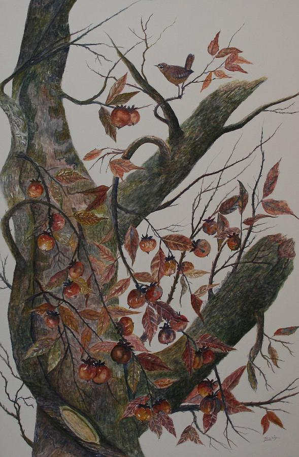 Persimmon Tree Painting  - Persimmon Tree Fine Art Print