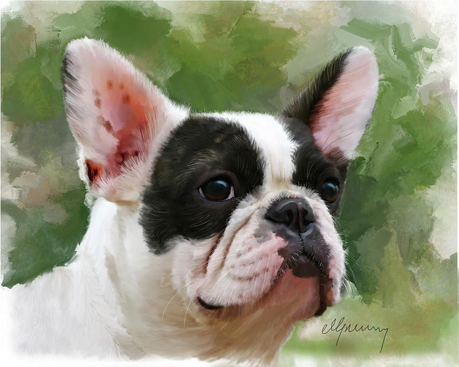 Pet Bulldog Portrait Painting
