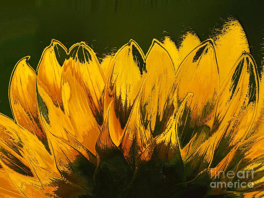 Petales De Soleil - A41b Digital Art