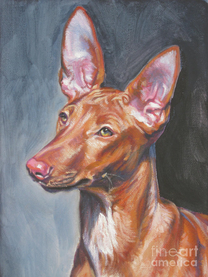 Pharaoh Hound Painting