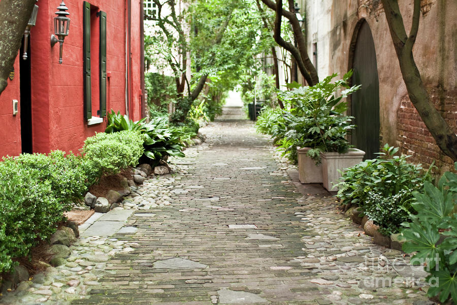 Philadelphia Alley Charleston Pathway Photograph