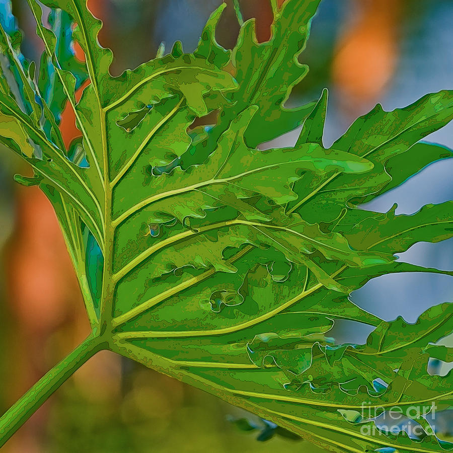 Philodendron Digital Art  - Philodendron Fine Art Print