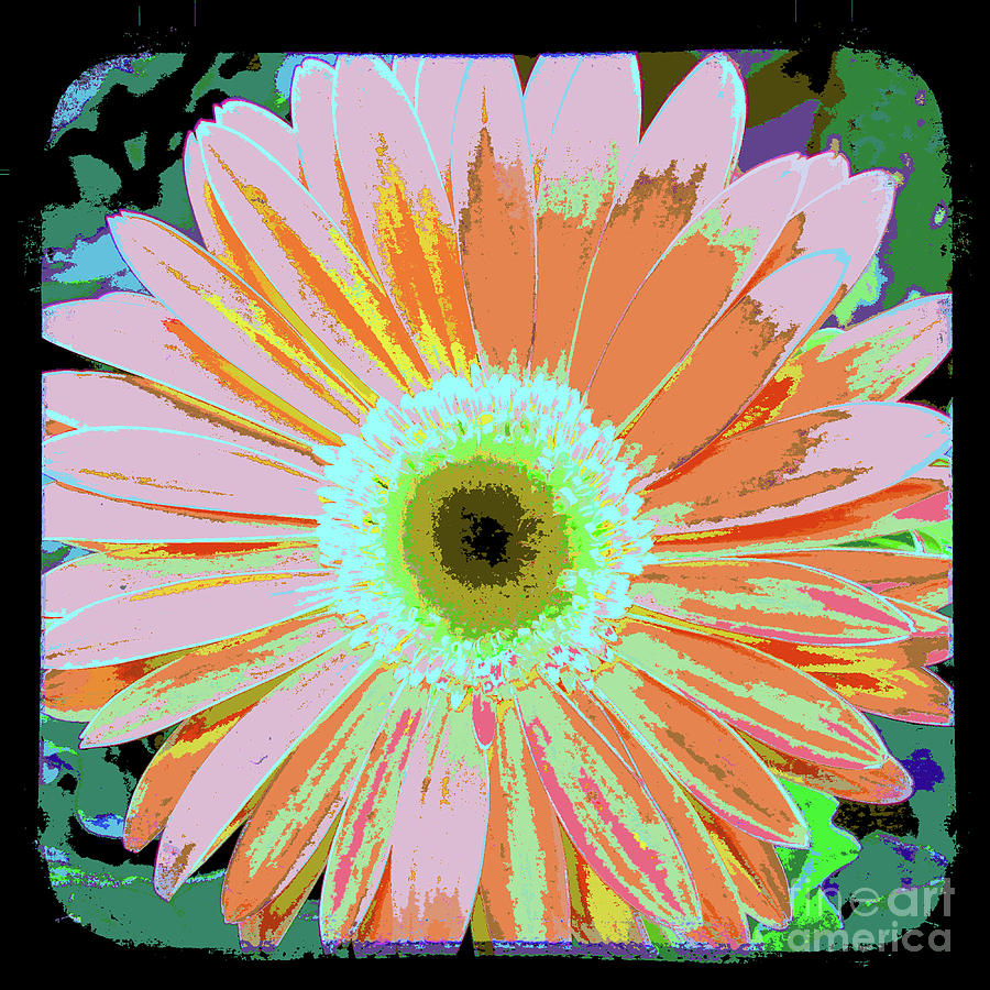 Photography Art Floral Mixed Media