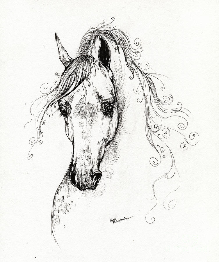 Running arabian horse drawing - photo#11