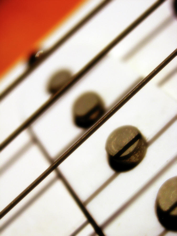 Pickups And Strings Photograph  - Pickups And Strings Fine Art Print