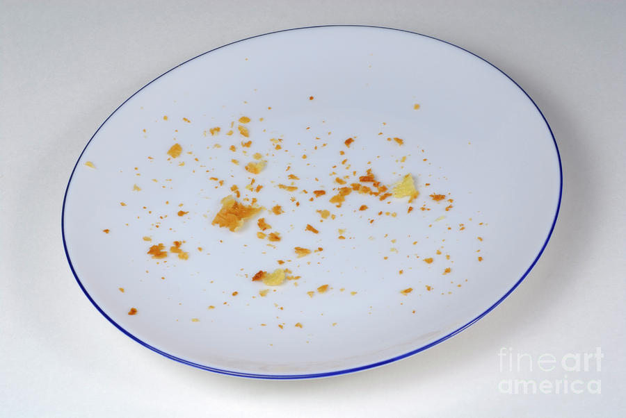 Chocolate Cake Crumbs Sit On Empty Stock Photo 5121769 - Shutterstock |Empty Plate With Crumbs Clipart