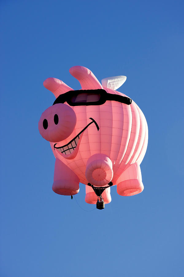 Pig Flying Balloon Photograph by Joe Myeress