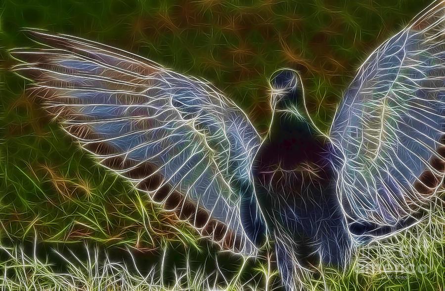 Pigeon Spirit Photograph