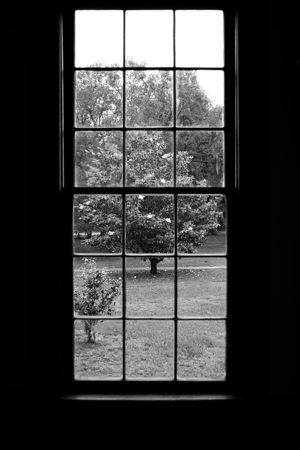 Pinckney House Photograph