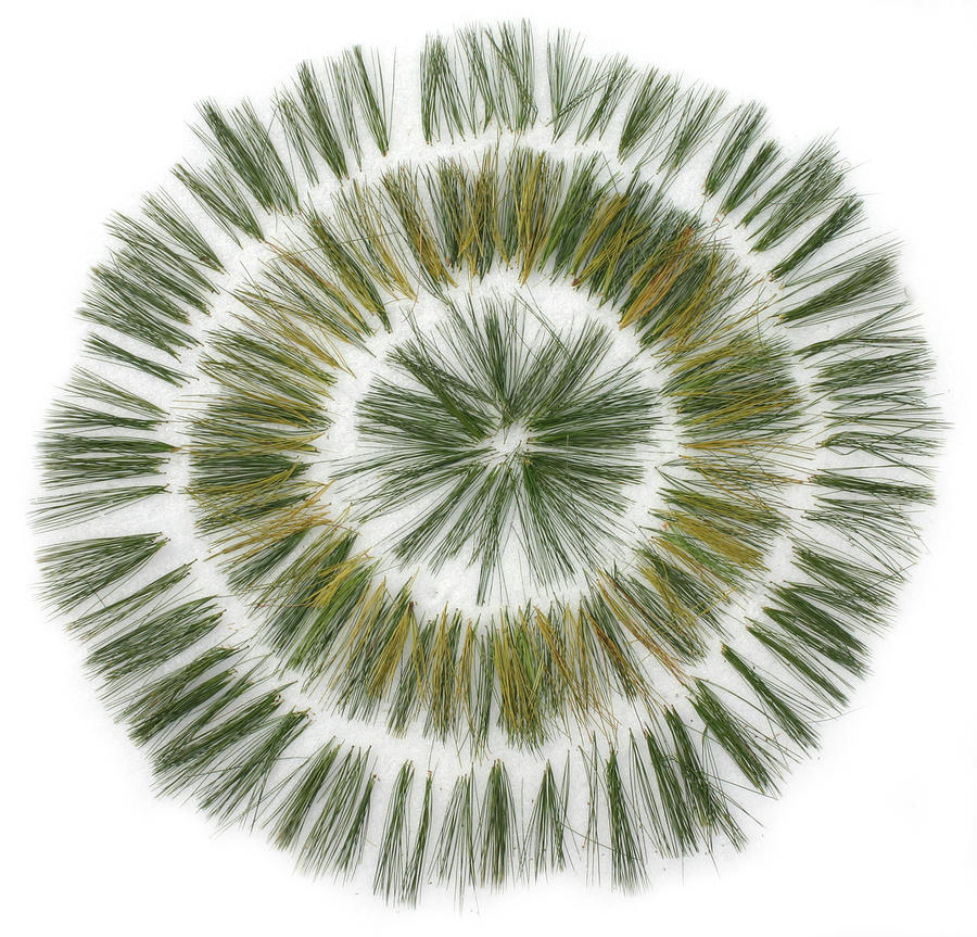 Pine Needle Flower Sculpture