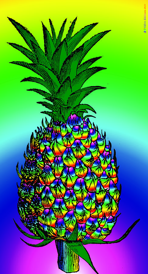 Pineapple Digital Art  - Pineapple Fine Art Print