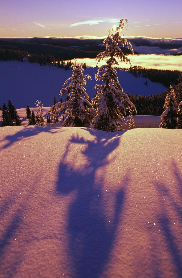 Pink And Purple Sunrise Shadows Of Snow Photograph