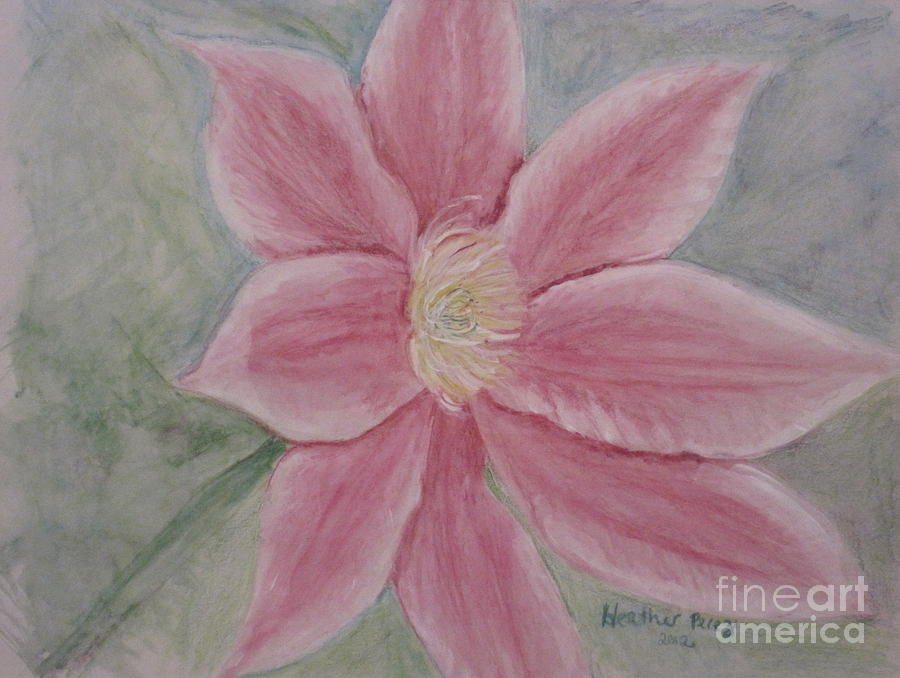 Pink Clematis Mixed Media