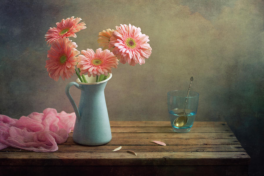 Pink Gerberas In Blue Pitcher Jug Photograph  - Pink Gerberas In Blue Pitcher Jug Fine Art Print