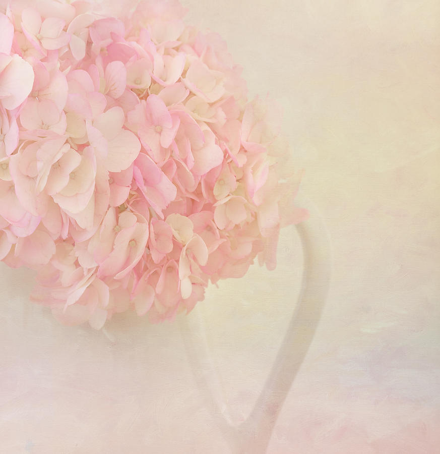 Pink Hydrangea Flowers In White Vase Photograph