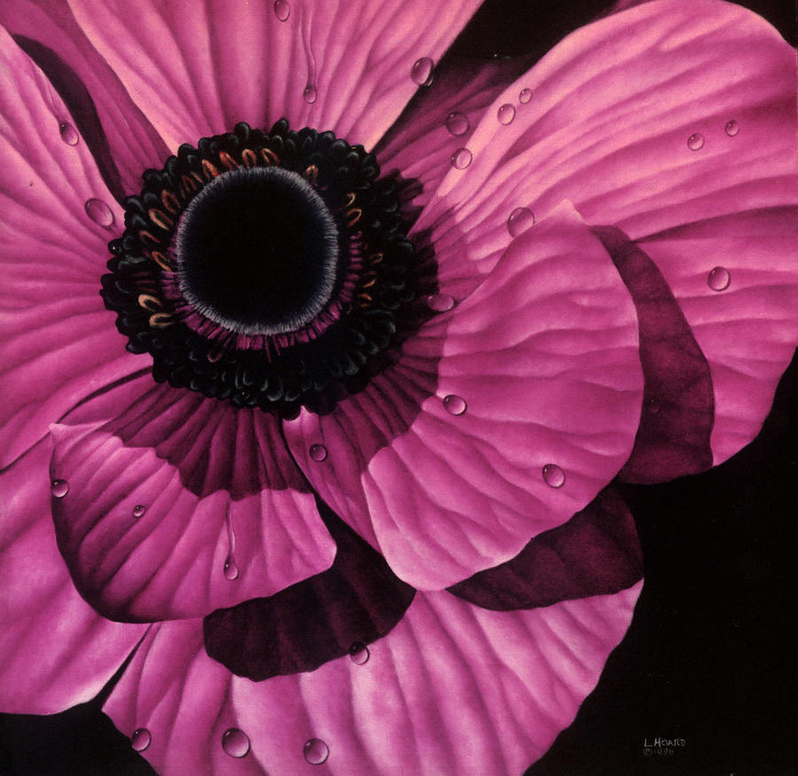 Pink Poppy Painting  - Pink Poppy Fine Art Print