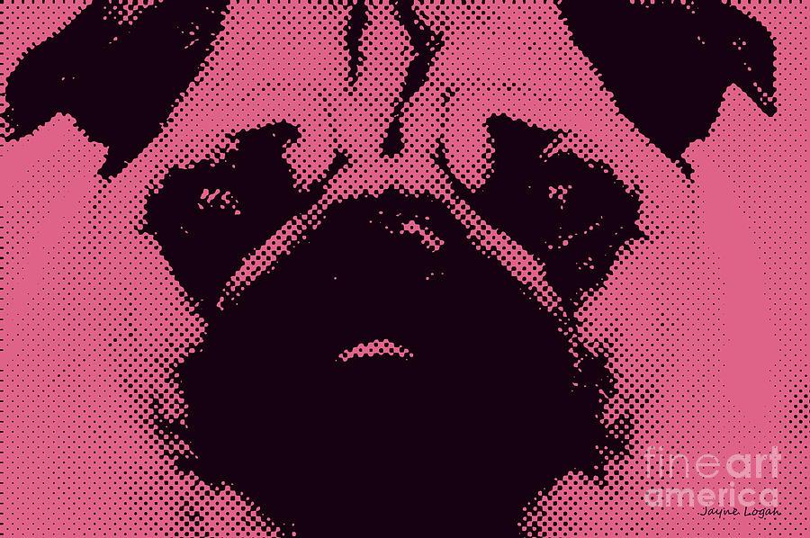 Pink Pug Photograph