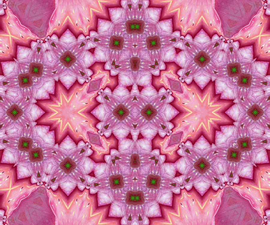 Pink Splash Mandala Abstract Mixed Media