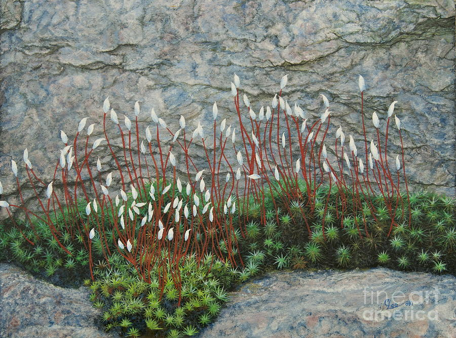 Pink Stony Creek Granite Still Life Study Painting  - Pink Stony Creek Granite Still Life Study Fine Art Print