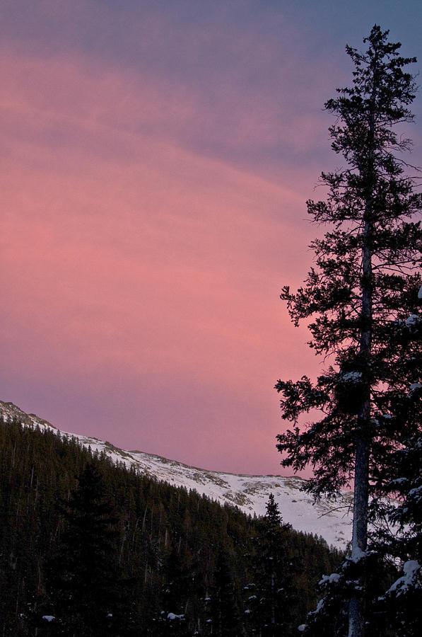 Pink Sunset Photograph