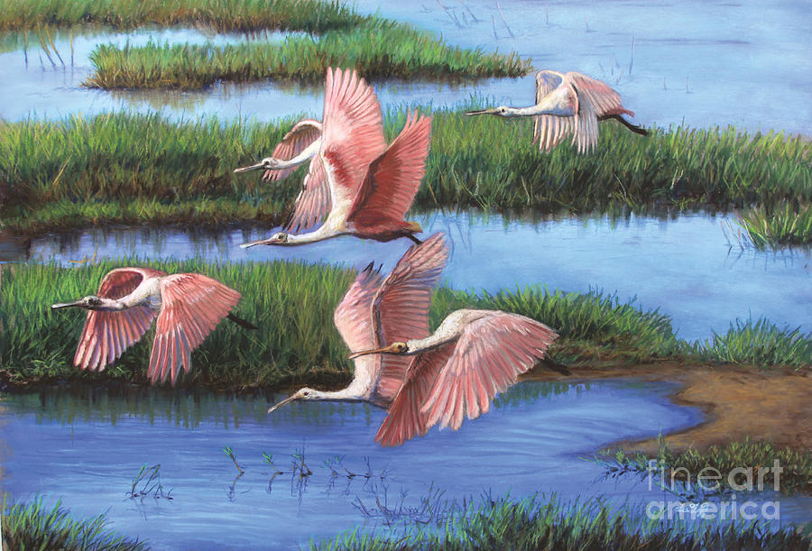 everglades paintings