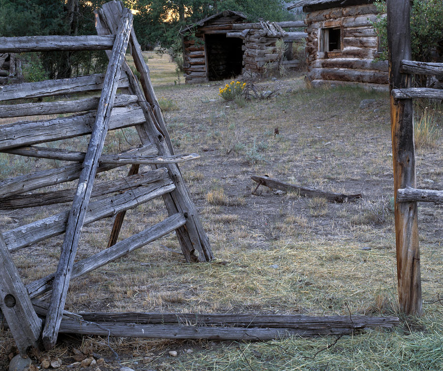 Pioneer Cabins Photograph