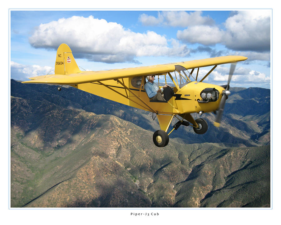 Piper Cub Photograph  - Piper Cub Fine Art Print