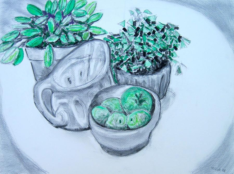 Pitcher And Plants Drawing